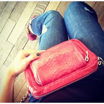 Sac charly en python rouge
